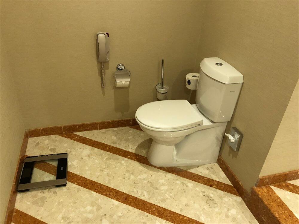 モスクワ マリオット ロイヤル オーロラ ホテルのトイレ