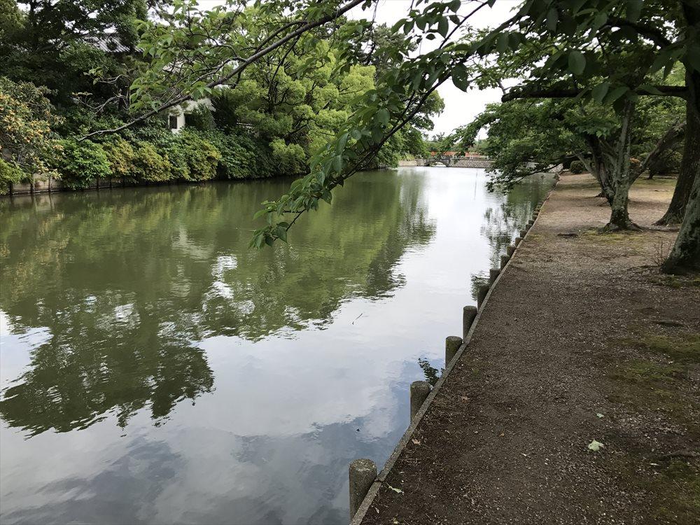 九華公園の堀