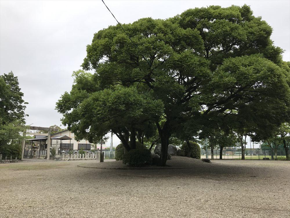 桑名城の本丸跡2