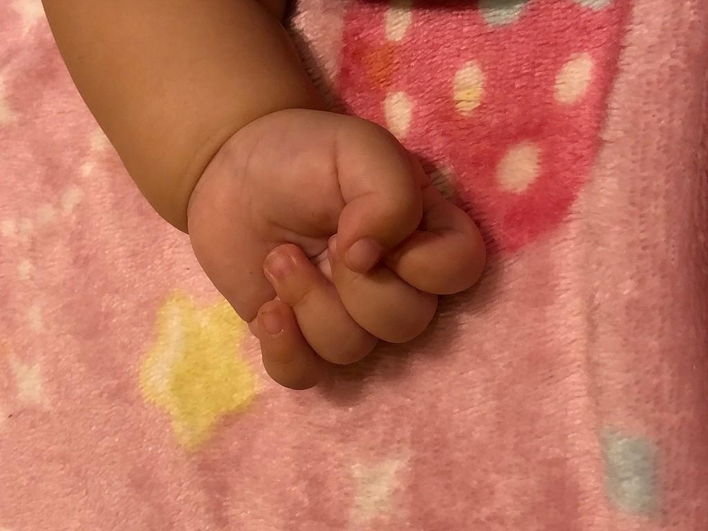 赤ちゃんの小さな拳