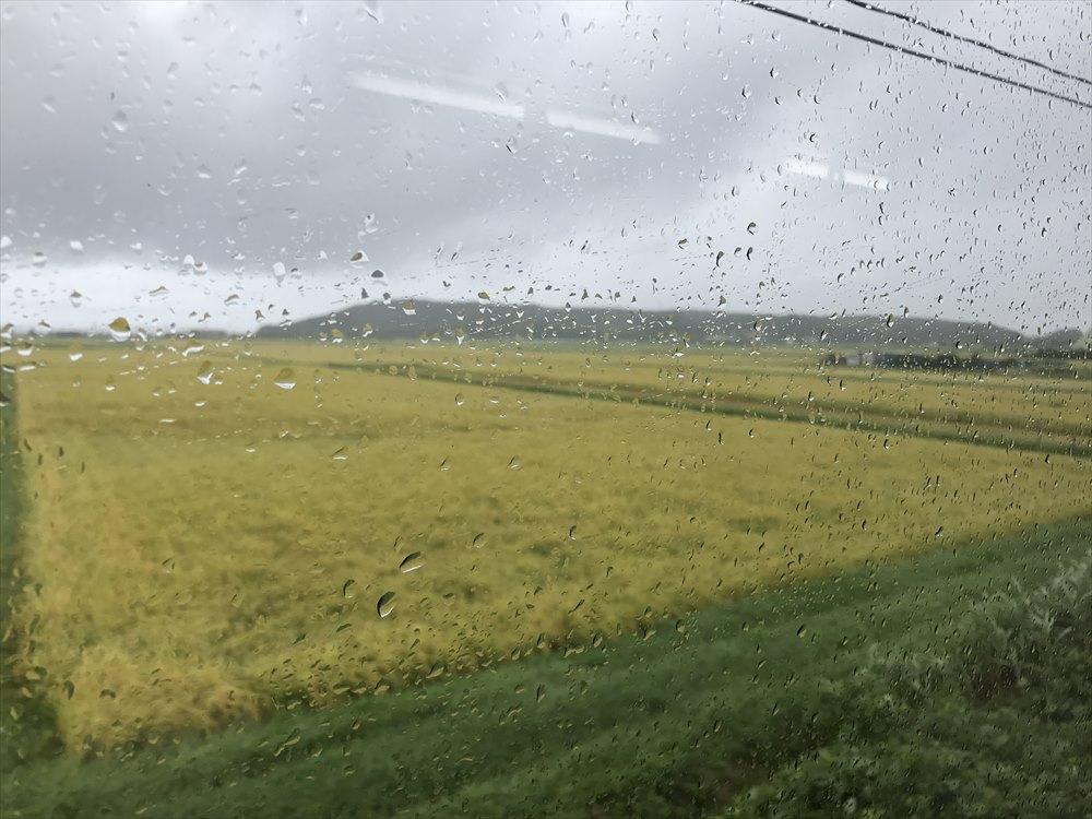 のと鉄道から稲穂