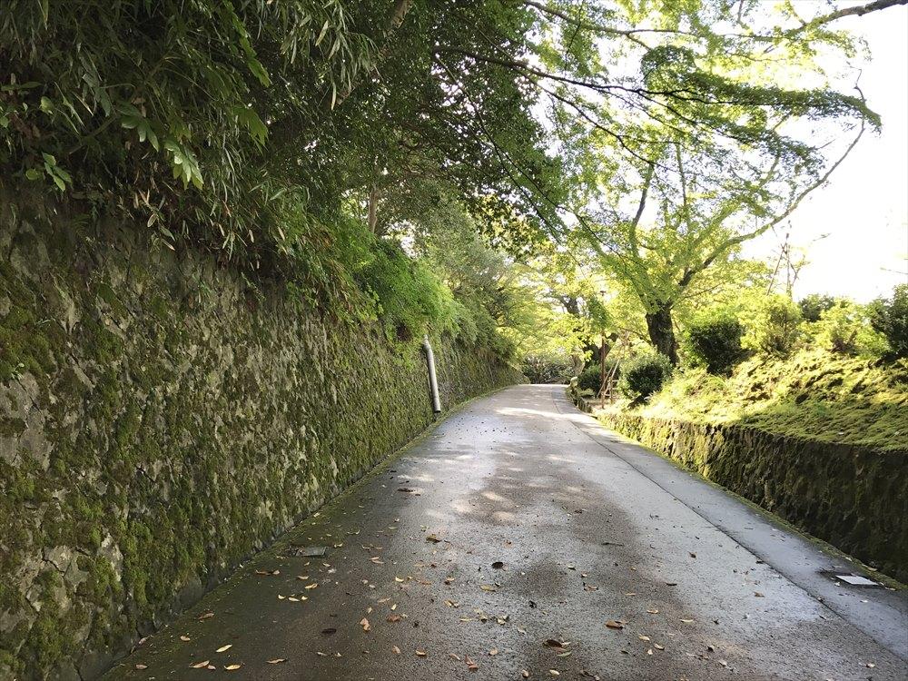 小丸山城址公園の坂道
