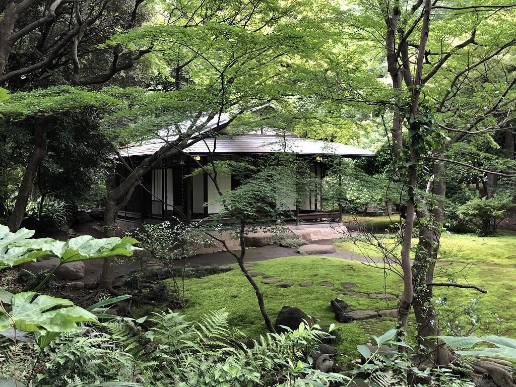 旧古河庭園の日本庭園5