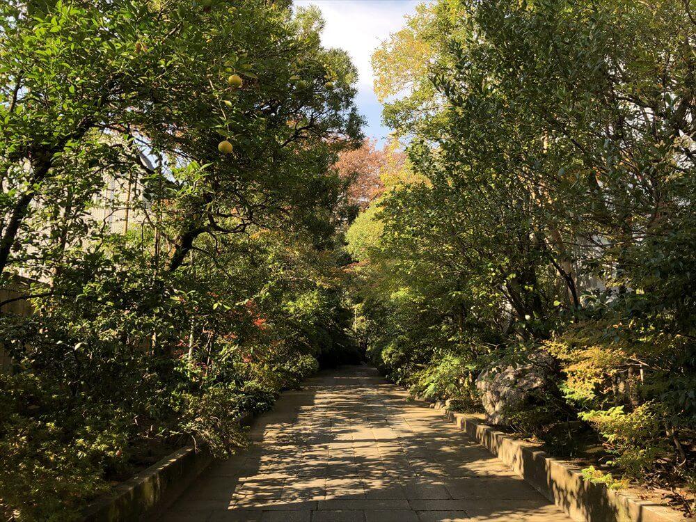 東禅寺の参道