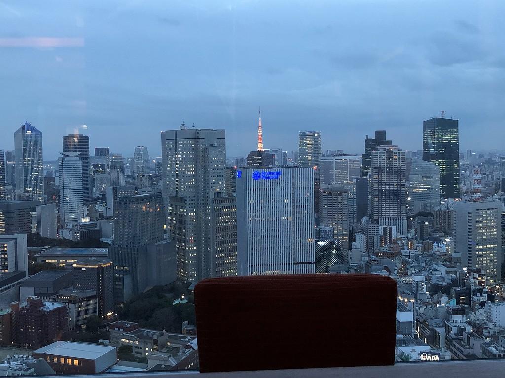 ザ・プリンスギャラリー東京紀尾井町の「OASIS GARDEN」から東京タワーのライトアップ
