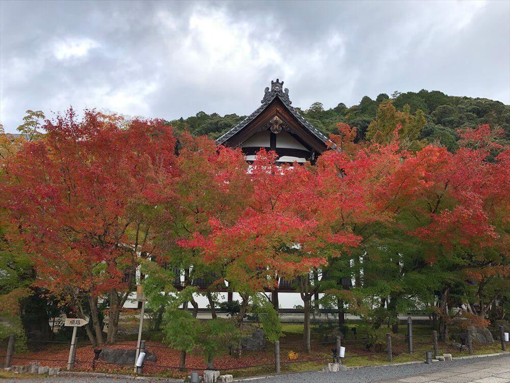 永観堂の紅葉3