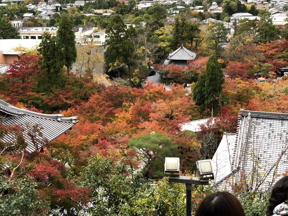 永観堂の多宝塔から京都市内一望2