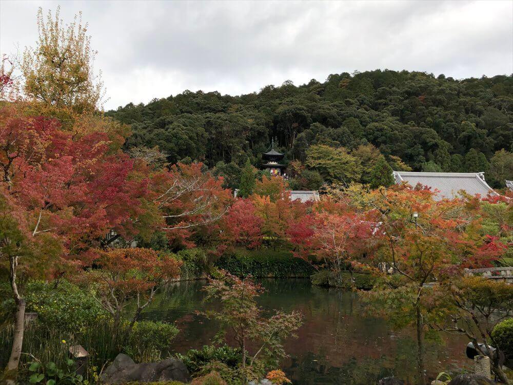放生池から多宝塔1