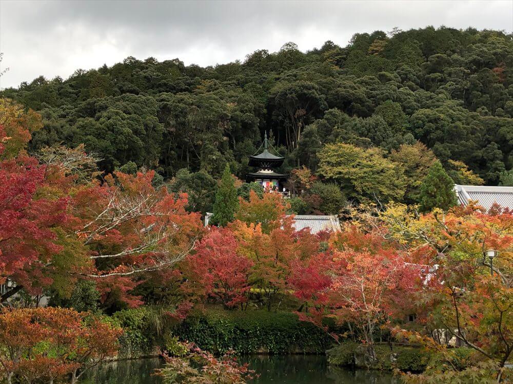 放生池から多宝塔2