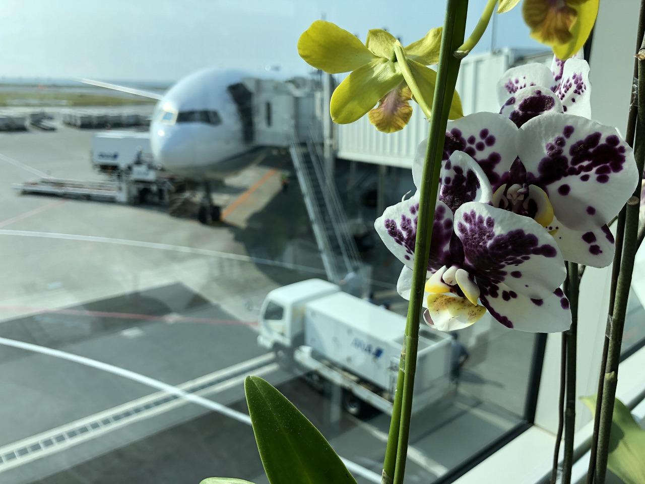 沖縄空港のANA473便