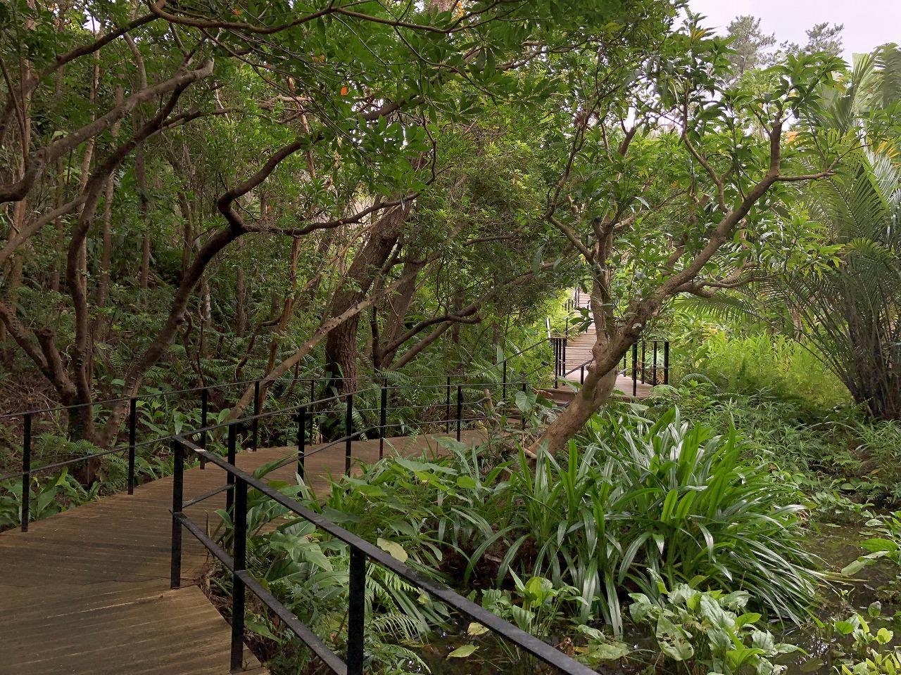 リッツカールトン沖縄の本館と別館を繋ぐ通路2