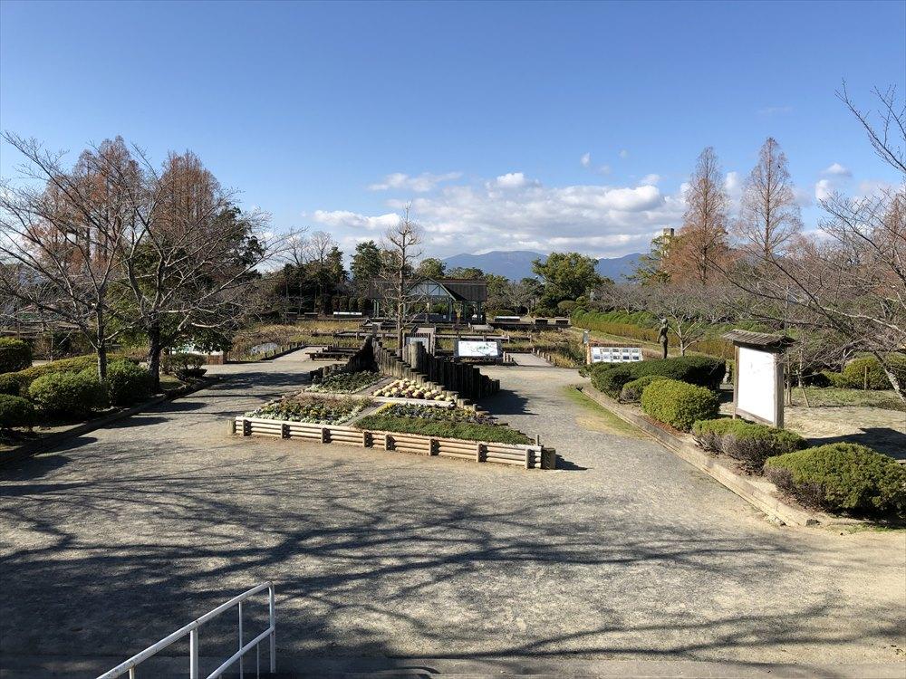 晴天の神野公園
