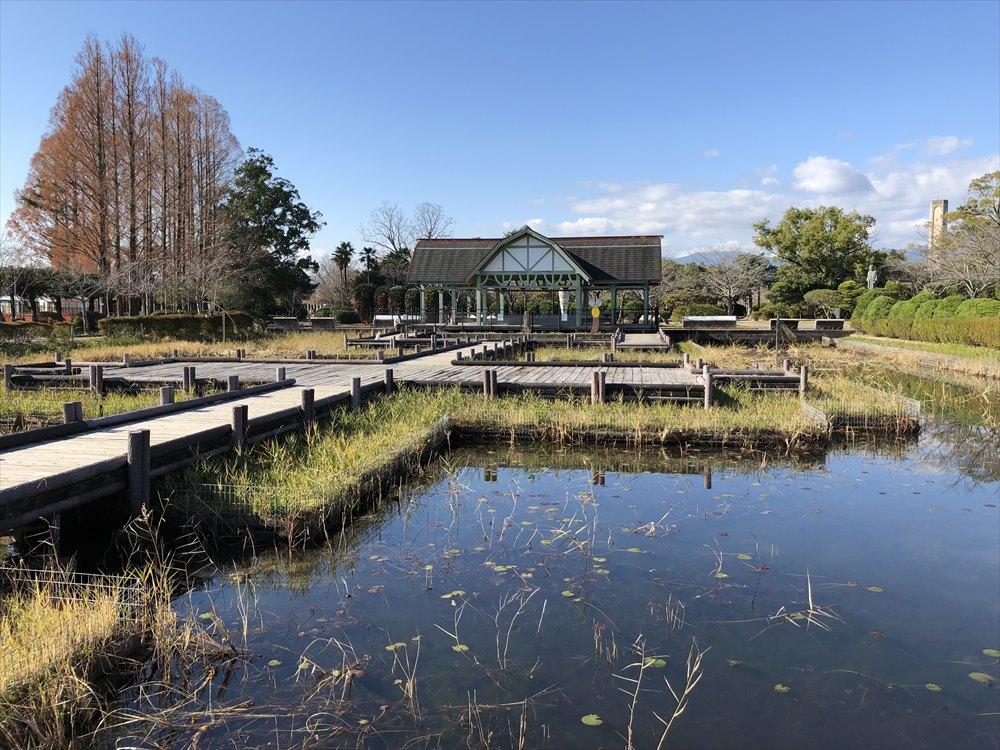 神野公園のとんぼ池1