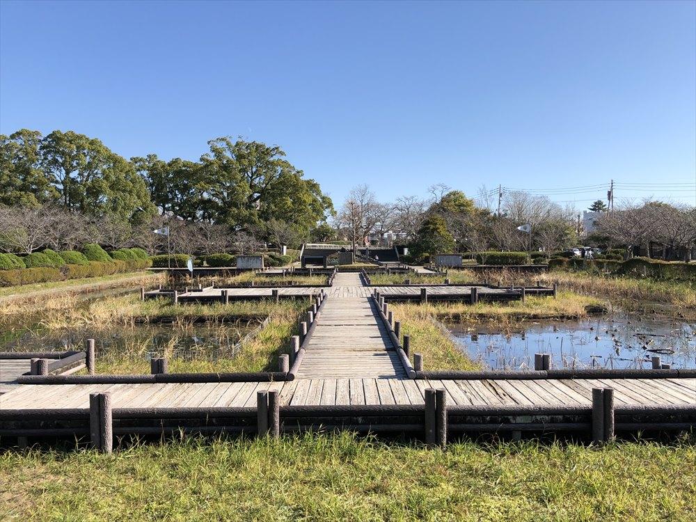 神野公園のとんぼ池2