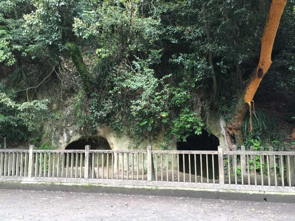 西郷洞窟画像
