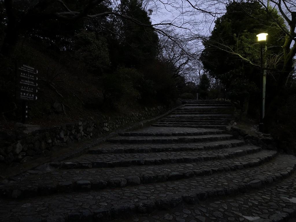 早朝の亀山公園5