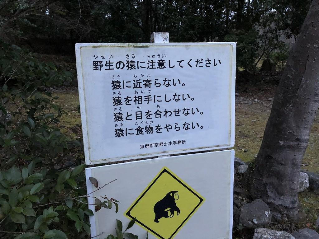 早朝の亀山公園4