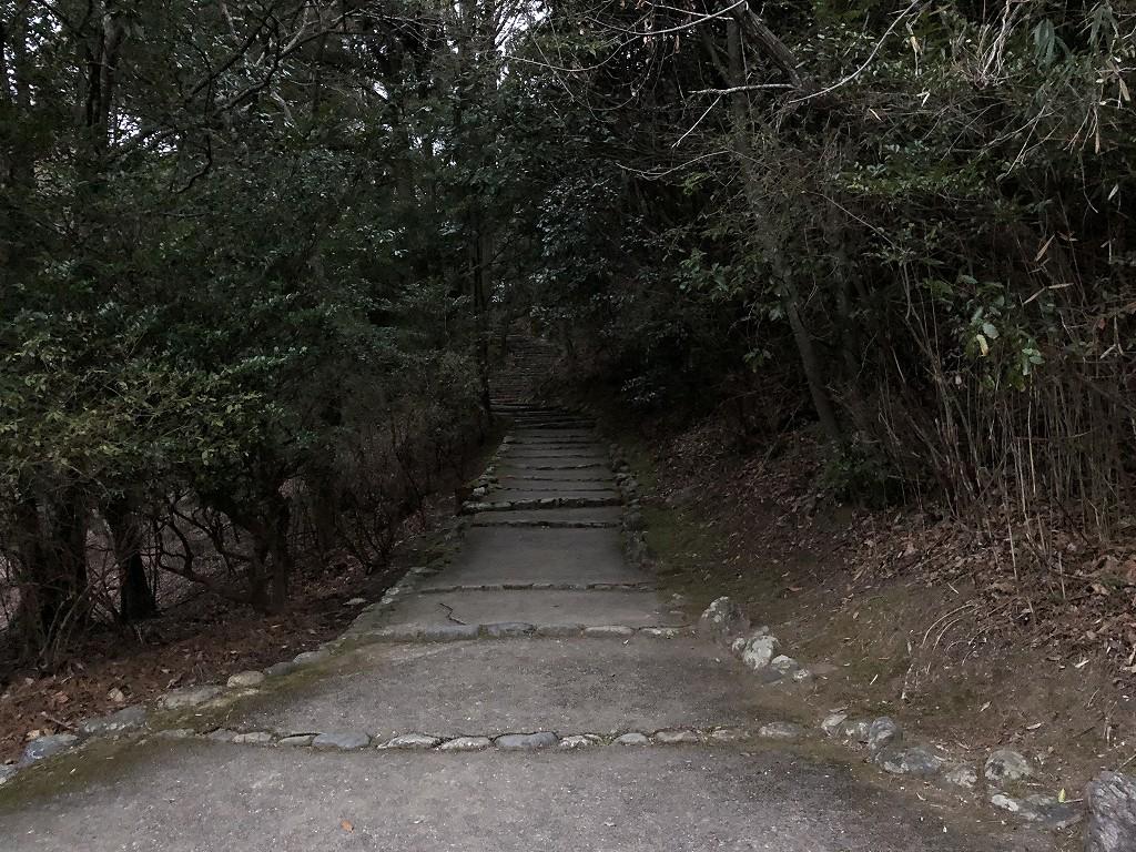 早朝の亀山公園1