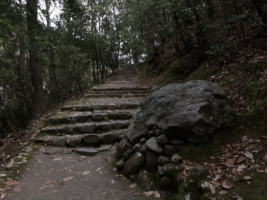 早朝の亀山公園2