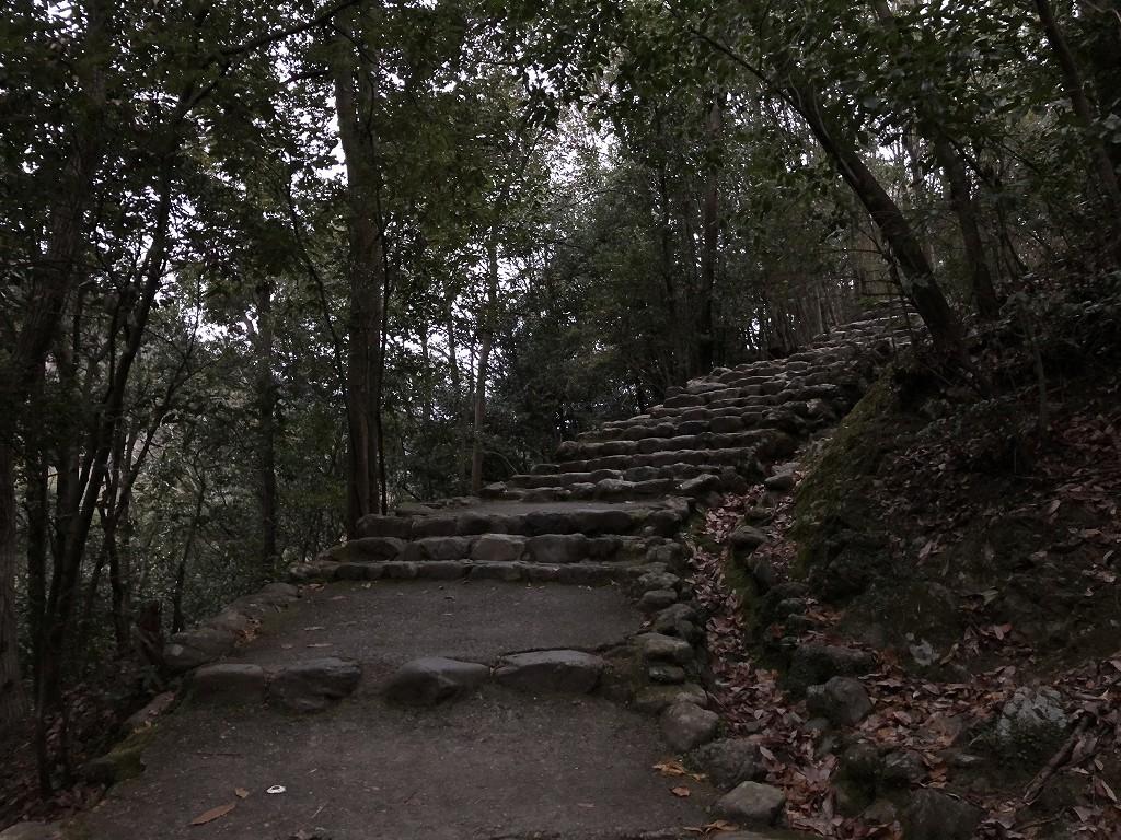早朝の亀山公園3
