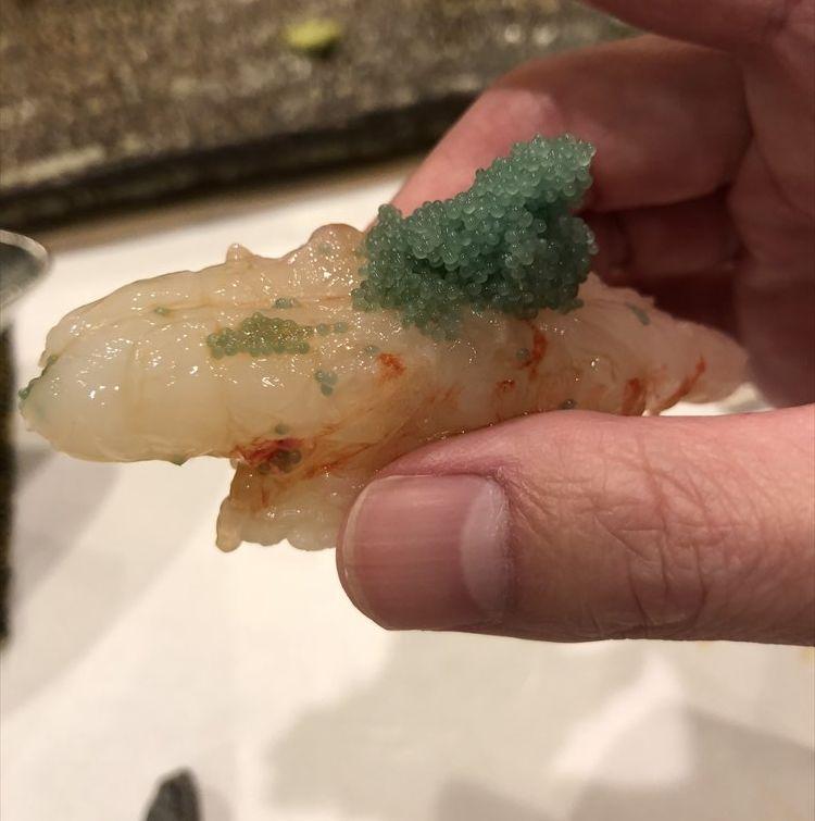 札幌の鮨 西光のボタンエビ