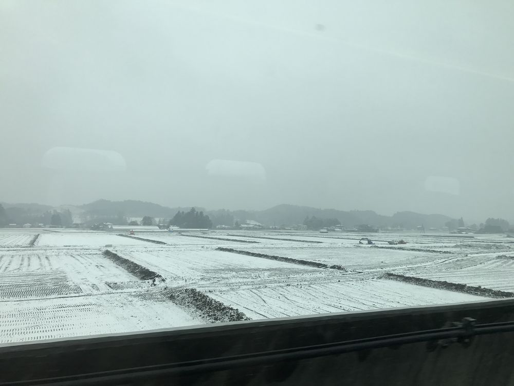 雪の宇都宮