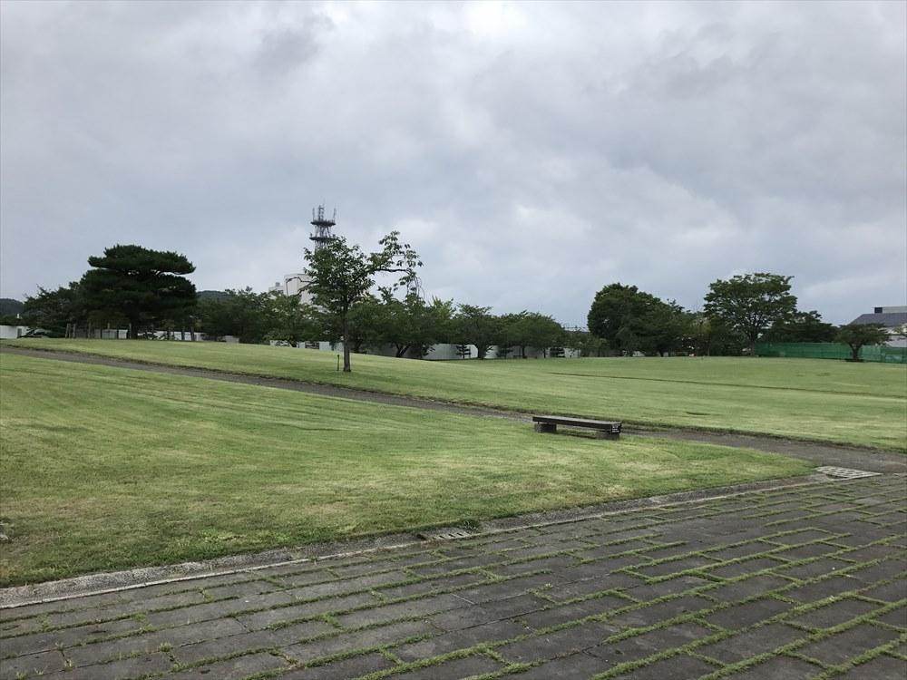 白河市の城山公園の芝生