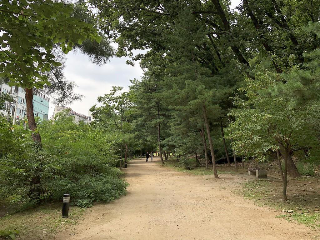 宣陵・靖陵の木陰