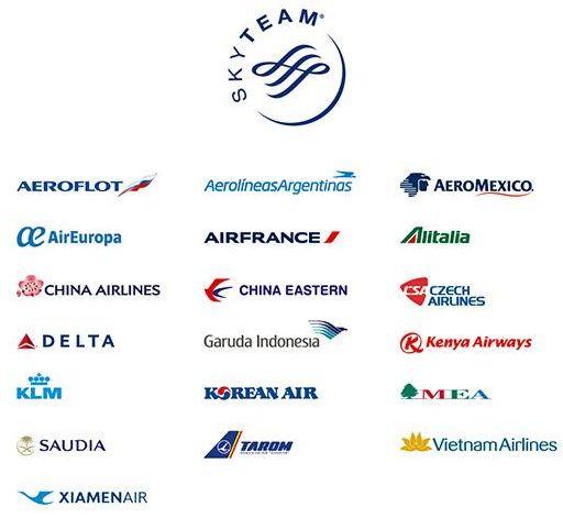 スカイチーム加盟航空会社19社
