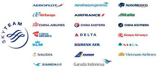 スカイチーム加盟航空会社20社