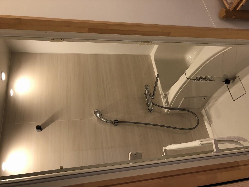 スイデンテラスのダブルルームの浴室