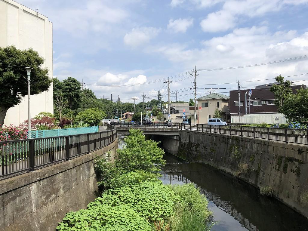 水道道路の仙川