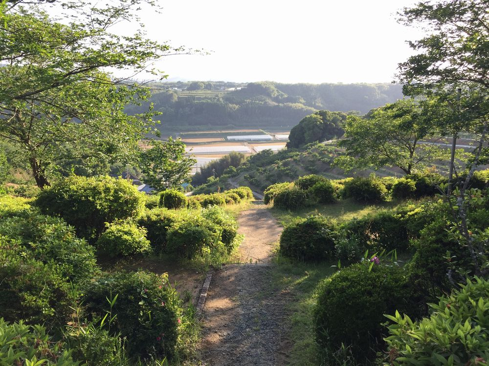 田原坂の立地画像