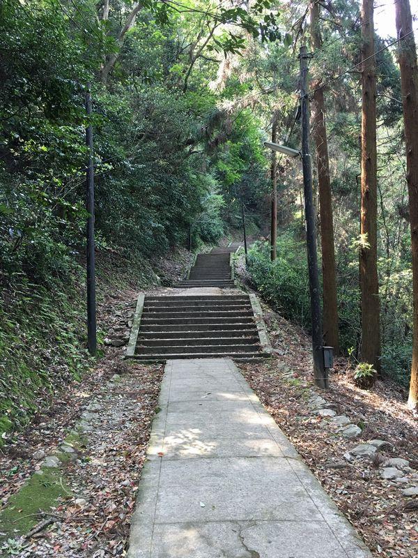 金刀比羅宮の鬱蒼とした山道1