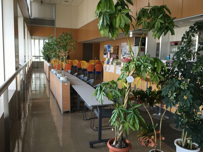 香川県庁舎の展望室のカフェ