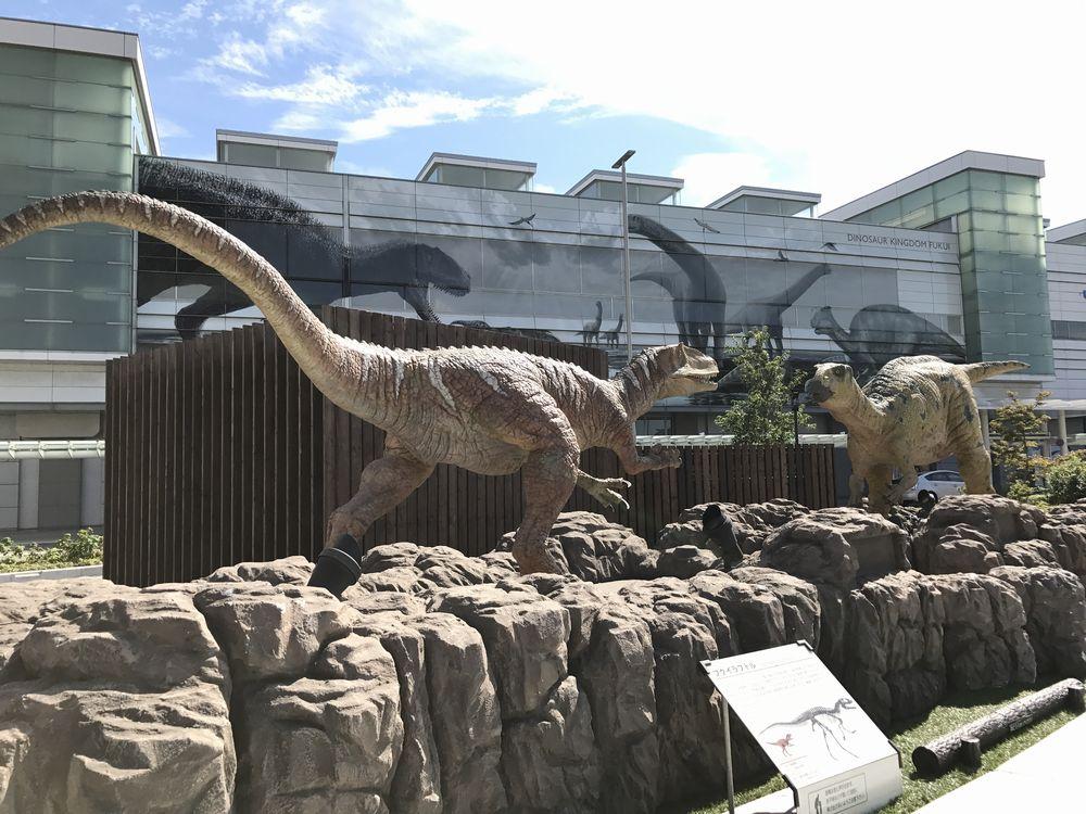 フクイラプトルとフクイサウルス