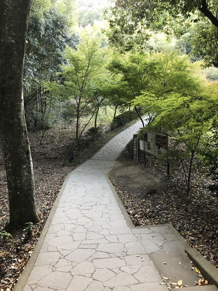 武雄神社の大楠への道1