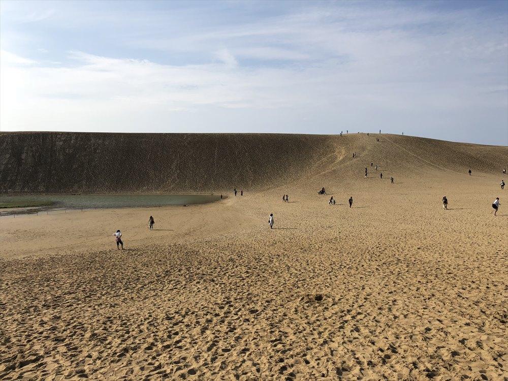 鳥取砂丘のオアシスまで2