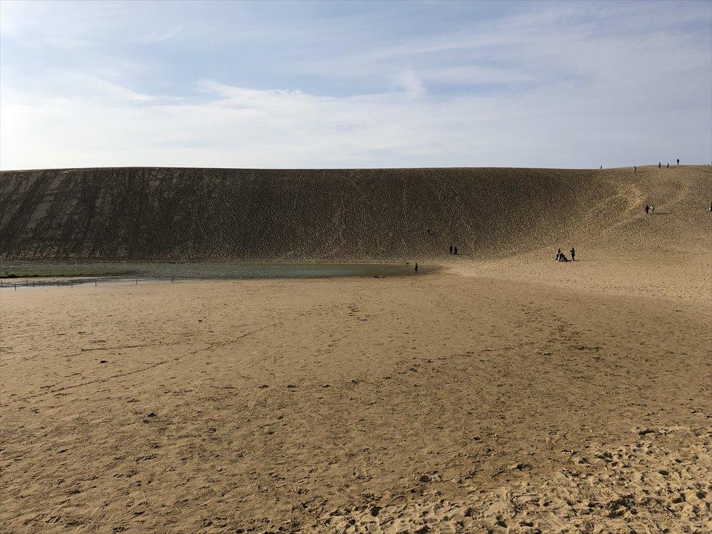 鳥取砂丘のオアシスまで3