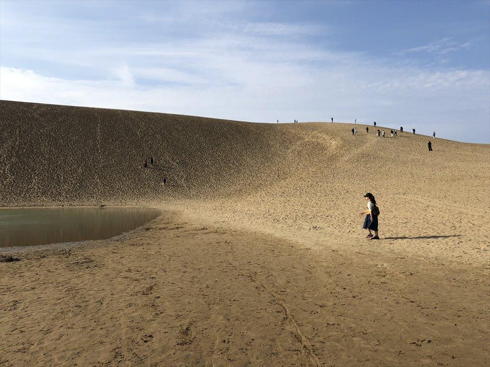 鳥取砂丘のオアシスまで4