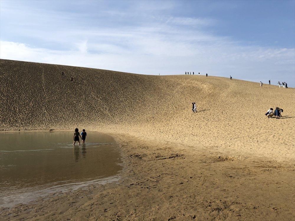鳥取砂丘のオアシスに入る子供