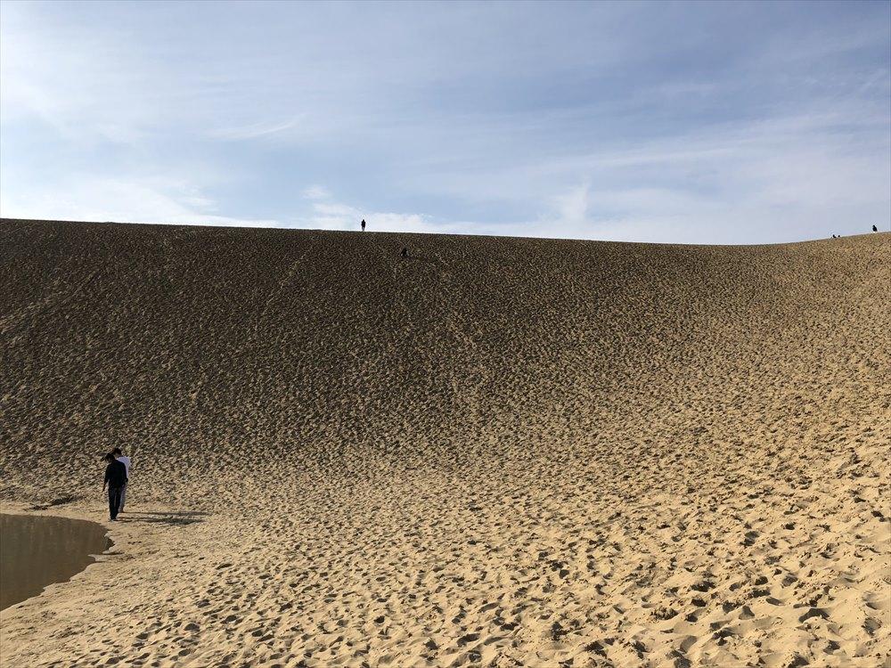 鳥取砂丘の急斜面とゆるやかな斜面