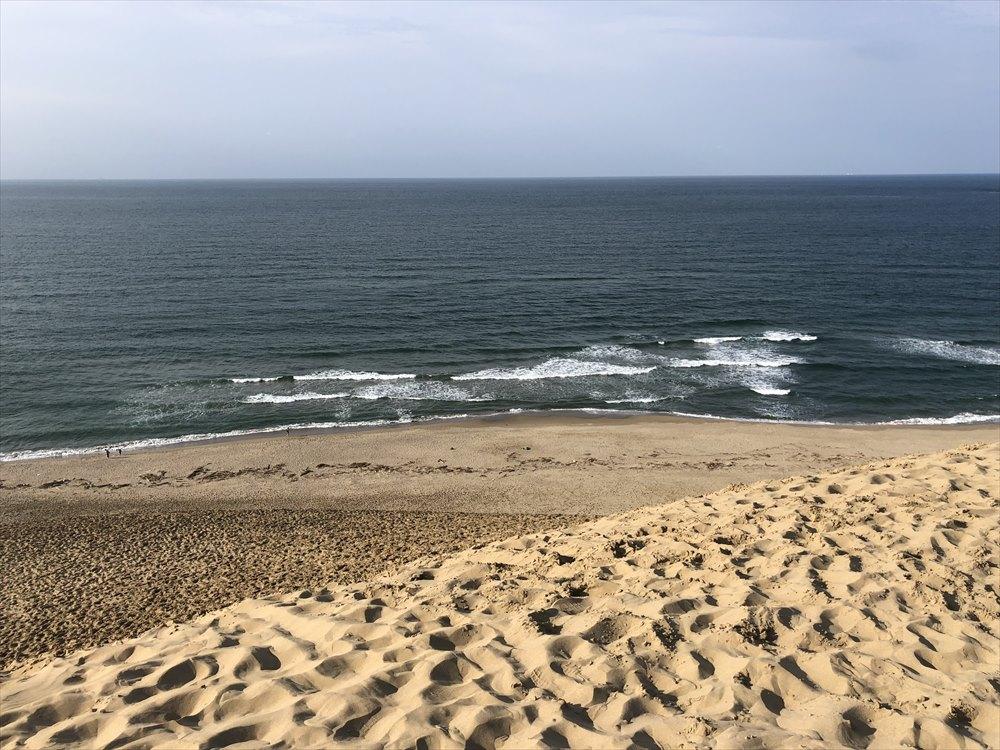 鳥取砂丘の馬の背の上1