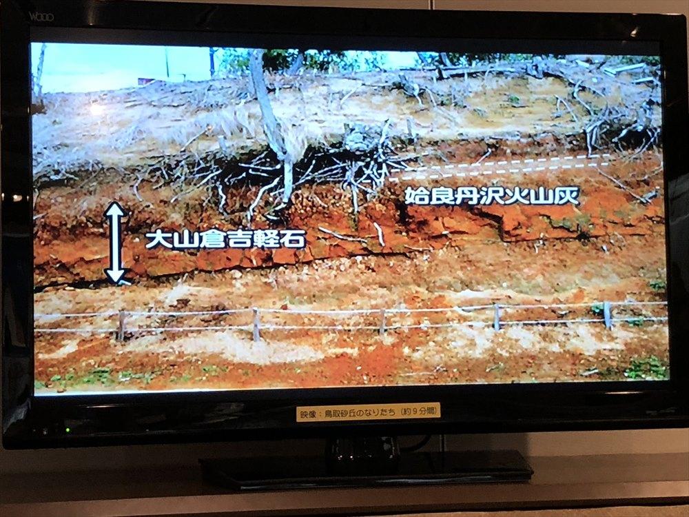 鳥取県立博物館の砂丘の成り立ち