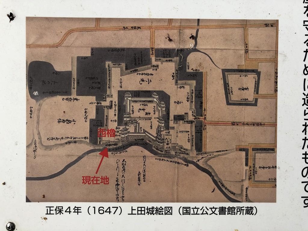 上田城の尼ヶ淵の崖4