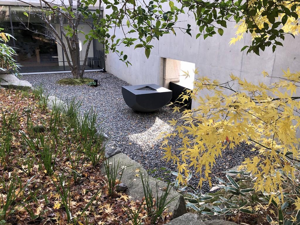 鈴木大拙館の露地の庭