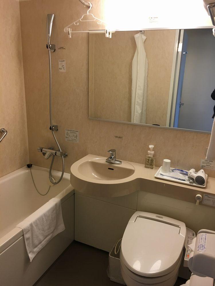 ダイワロイネットホテル和歌山の禁煙スタンダードダブル(バスルーム)