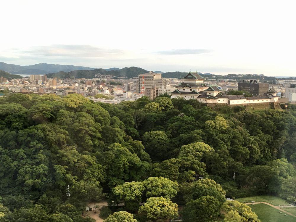 ダイワロイネットホテル和歌山から和歌山城(晴れ)