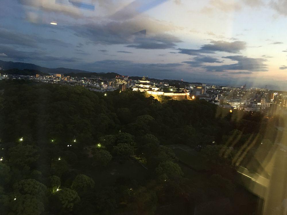 ライトアップした和歌山城