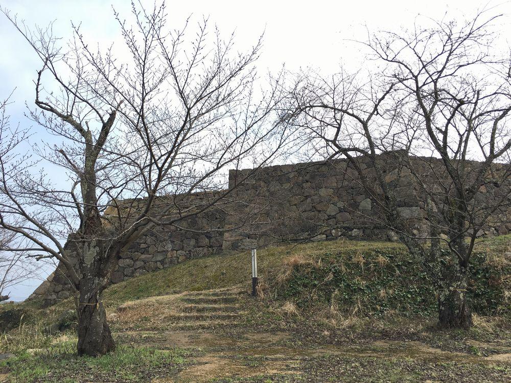 米子城跡の遠見櫓の桜